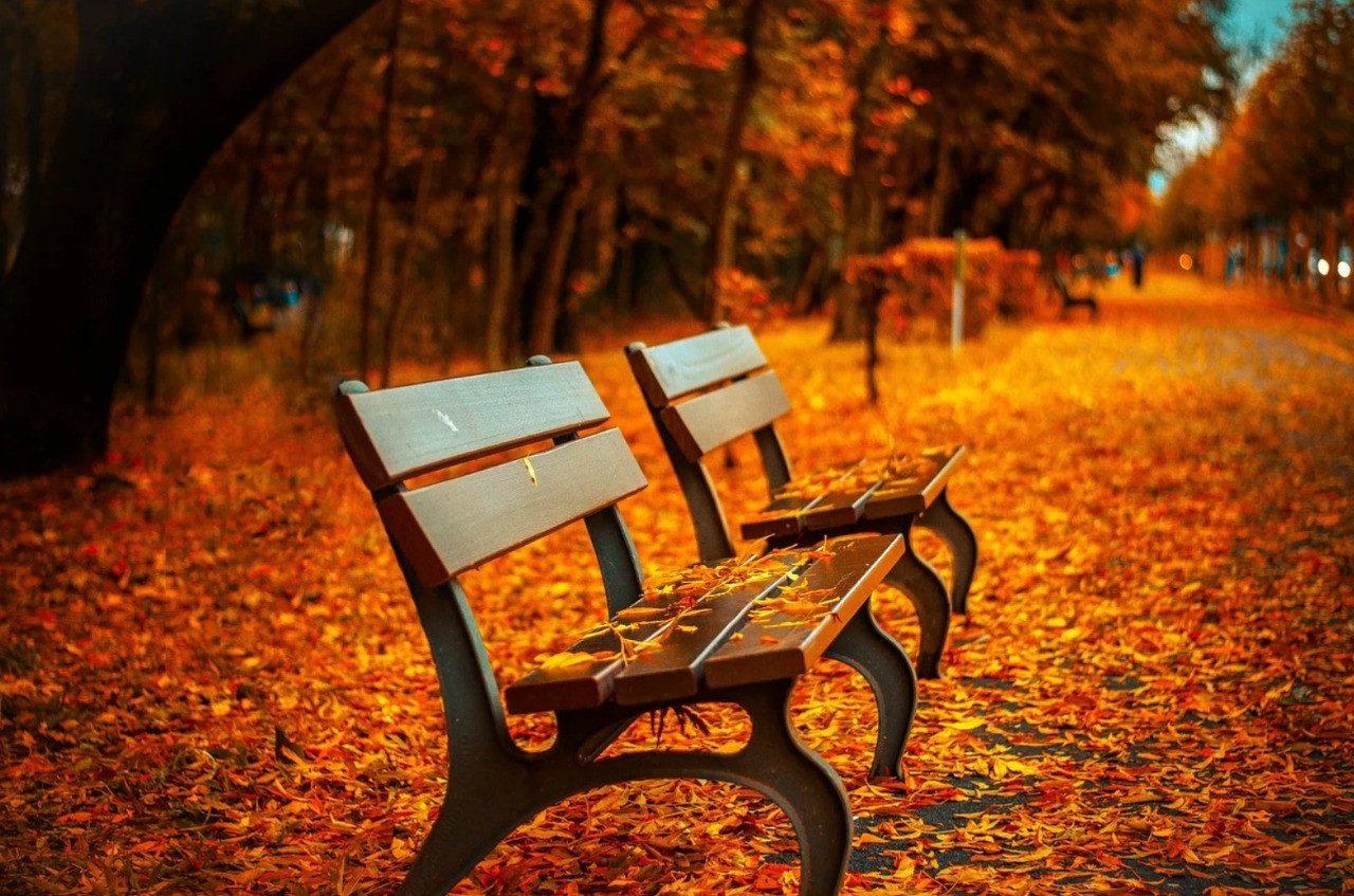 17 октября: какой сегодня праздник, что можно, а что нельзя делать в этот день