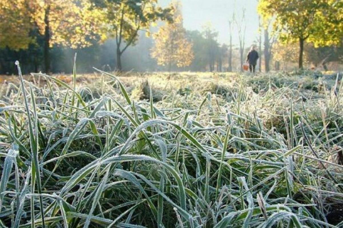 Погода в Жлобине на следующей неделе 18-24 октября